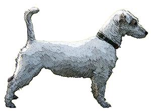 Kennel von Liechtenstein